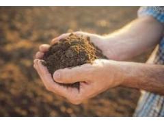广西做土壤监测的公司-土壤监测的工作内容