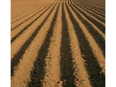 广西做建设占用耕地耕作层土壤剥离再利用实施方案的公司