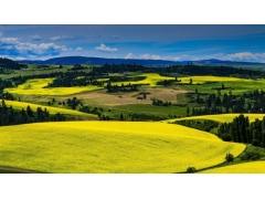 总体规划相关指标生态保护红线面积是什么意思?永久基本农田保护面积呢?